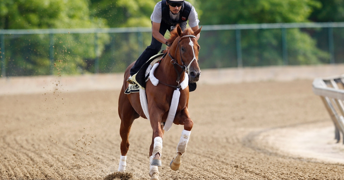 I'll Have Another on a practice run at Pimlico Race Course on May 16, 2012 in Baltimore, Maryland.</p>