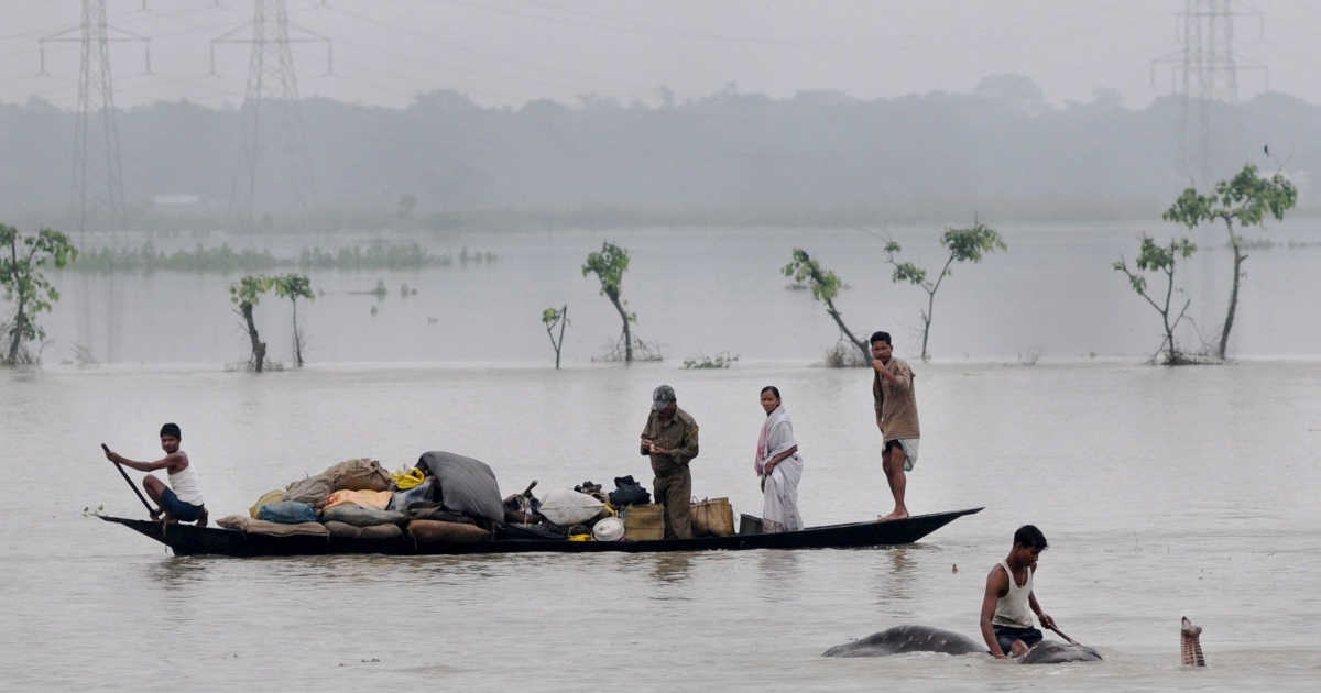A mahout moves an elephant to higher ground as villagers paddle with their belongings through flood waters in the Pobitora Wildlife Sanctuary, some 55 kms from Guwahati, the capital city of the north-eastern state of Assam on June 28, 2012.</p>