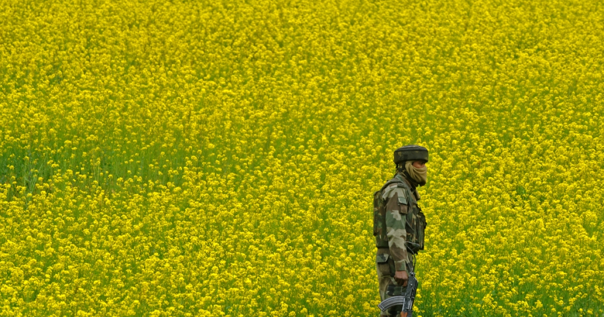 An Indian soldier stands guard in Kakapora, south of Srinagar, on April 2, 2010.</p>