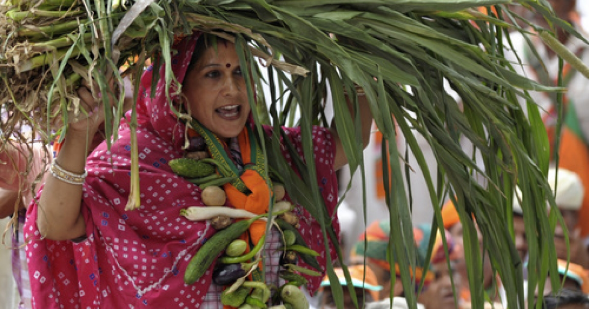 An Indian farmer with vegetables and produce demonstrates during a protest against land acquisition in New Delhi on August 3, 2011. Dozens of farmers assembled at Jantar Mantar during the protest led by the opposition Bharatiya Janata Party's (BJP) Kisan Morcha.</p>