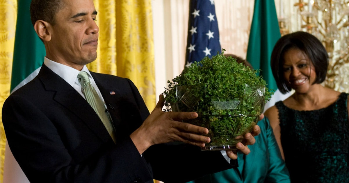 U.S. President Barack Obama holds a bowl of shamrocks presented to him by Prime Minister Brian Cowen of Ireland, alongside First Lady Michelle Obama (right) during a St. Patrick's Day reception in the East Room of the White House in Washington, D.C., on March 17, 2010.</p>