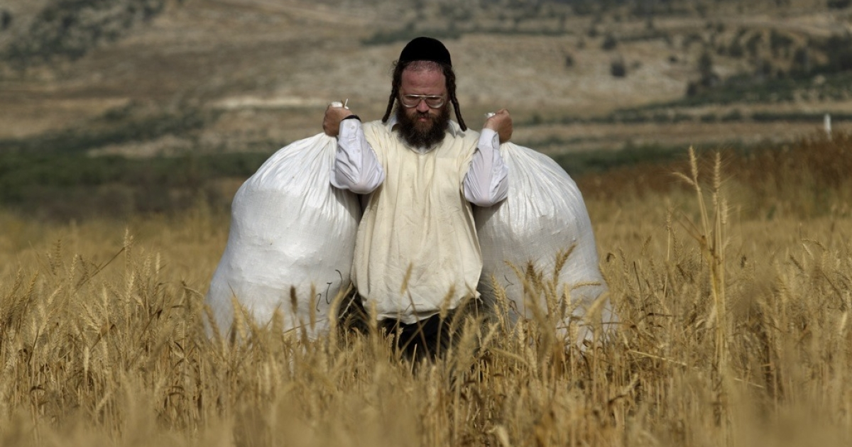 An Ultra-Orthodox Jew carries sacks full of wheat. The Israeli government enacted a series of austerity measures this week as it finally begins to feel the pinch of the global economic slowdown.</p>