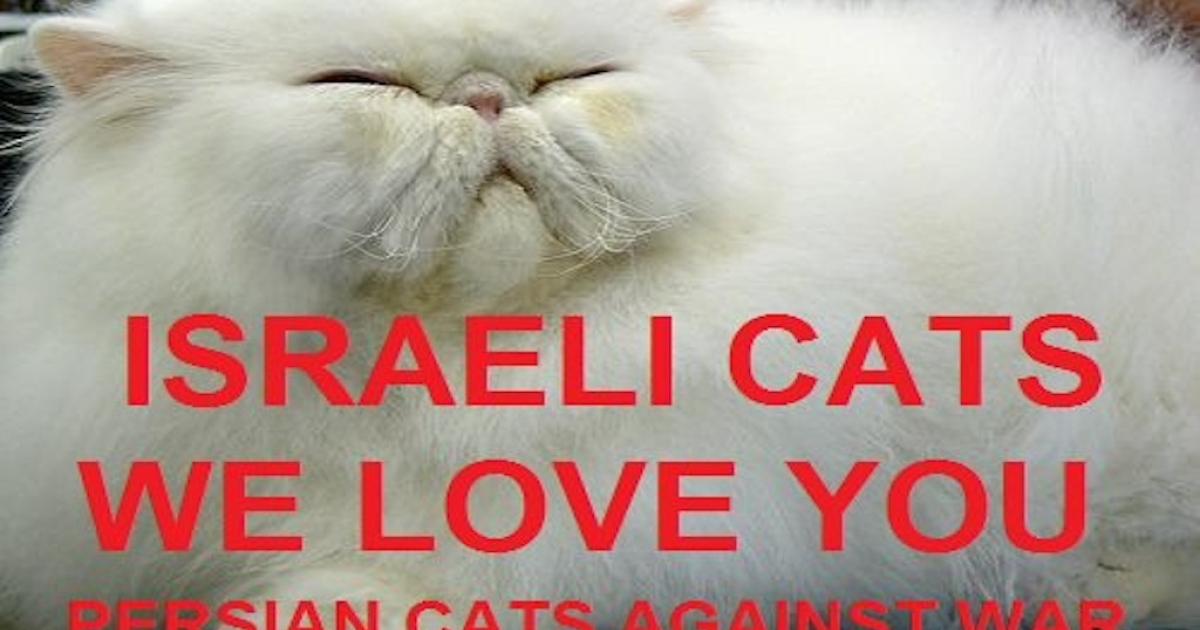 A Facebook meme inspired by a similar one over the weekend in which ordinary Israelis and Iranians posted pictures imposed with peace slogans.</p>
