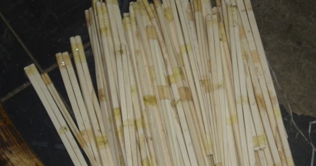 Ivory chopsticks seized by the Ethiopian Wildlife Conservation Authority during a 2009 raid of the Merkato, a market in central Addis Ababa, Ethiopia.</p>