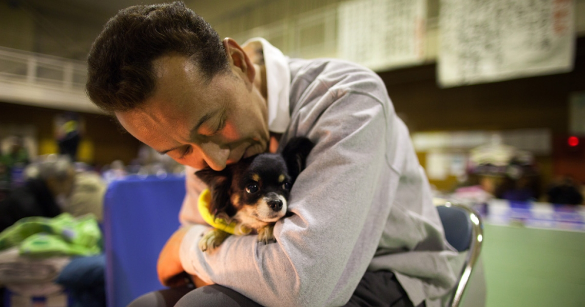 A man hugs his dog to keep it warm as earthquake victims pack an evacuation center March 20, 2011 in Ofunato, Japan. More than a week after the magnitude 9.0 earthquake and tsunami struck Japan, the death toll has risen to over 8,000 with thousands more still missing.</p>