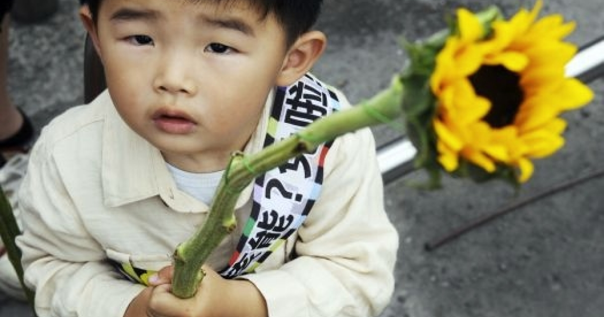 A child holds a sunflower as he joins anti-nuclear power plant demonstrators on April 30, 2011.</p>