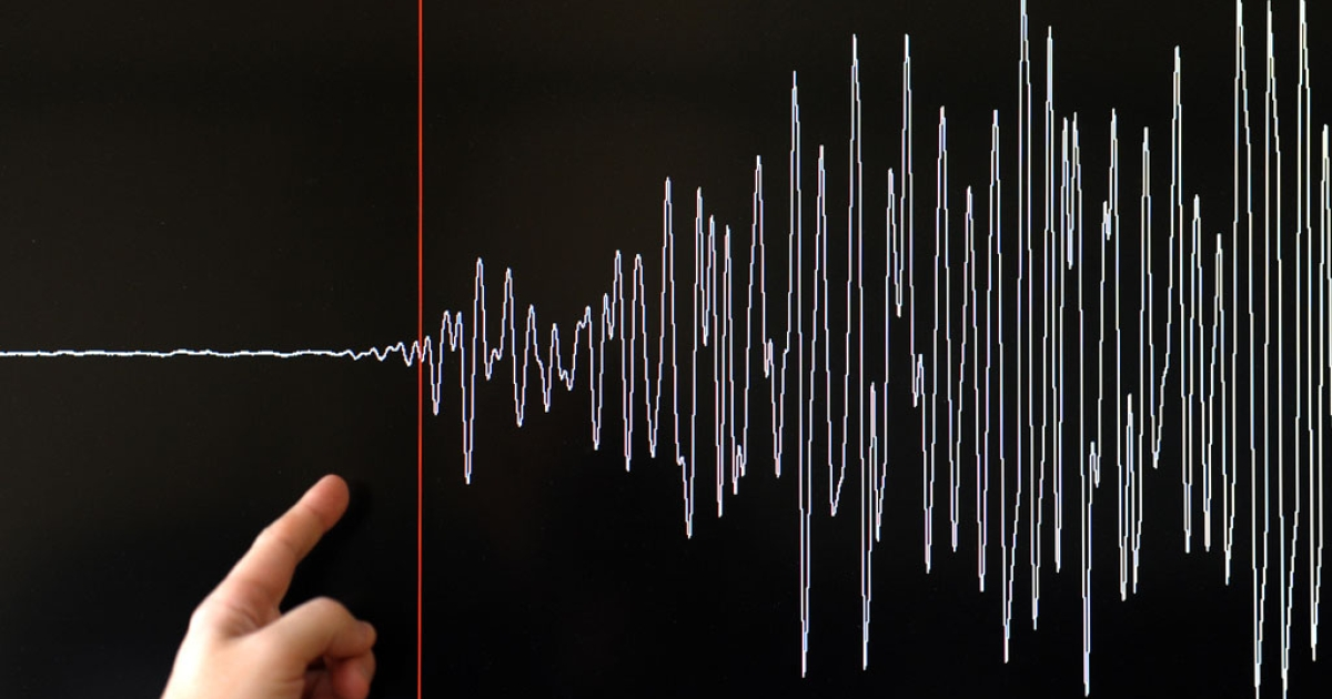 A technician of the French National Seism Survey Institute presents a graph on March 11, 2011 in Strasbourg, Eastern France, registered today during a 8.9-magnitude quake that hit northeast Japan today.</p>