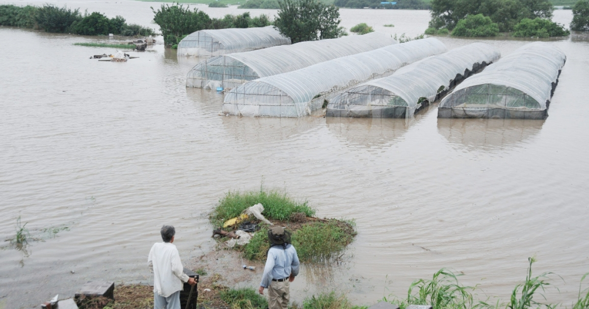 Local residents stand on grassland as they look out towards greenhouses submerged by floodwaters in Kurume, Fukuoka Prefecture, on July 14, 2012. About 400,000 people were ordered or advised to leave their homes in southwest Japan as heavy rain pounded the area for a third day leaving 29 dead or missing, officials and media said.</p>