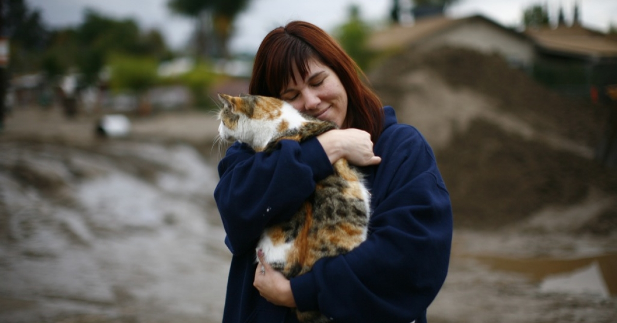 Deanna Wessman is reunited with her cat that was rescued by a television news cameraman after flooding December 23, 2010 in Highland, California.</p>
