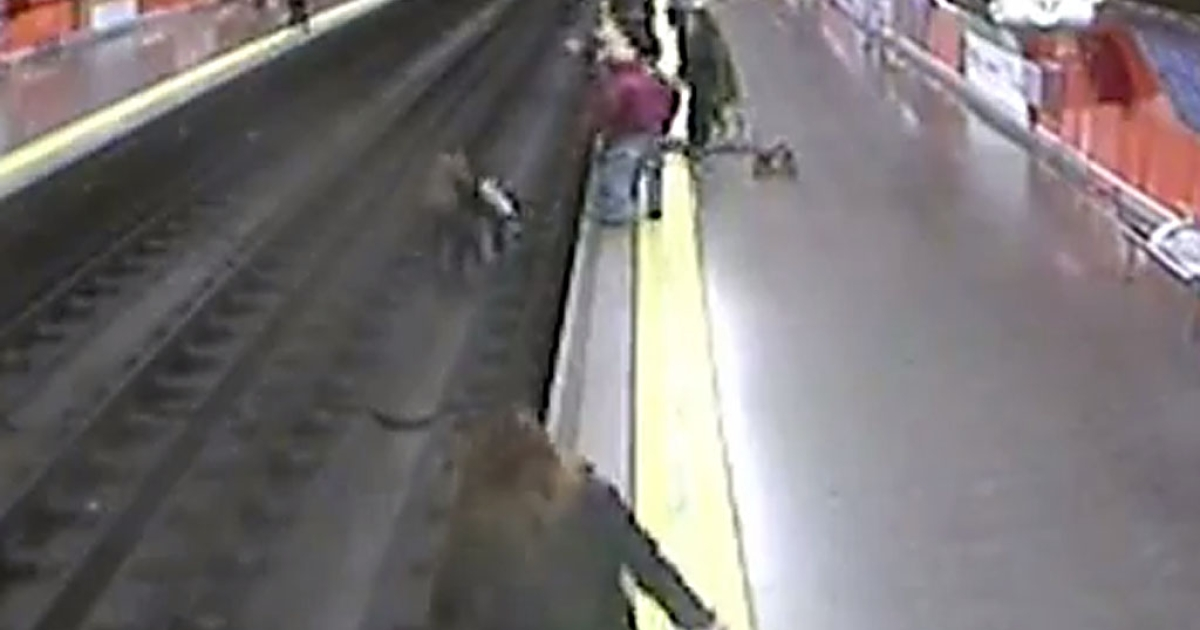 A 38-year-old Spanish policeman is being hailed a hero after he jumped onto metro tracks in Madrid on Monday, January 21, 2012 to save a woman that had fainted.</p>