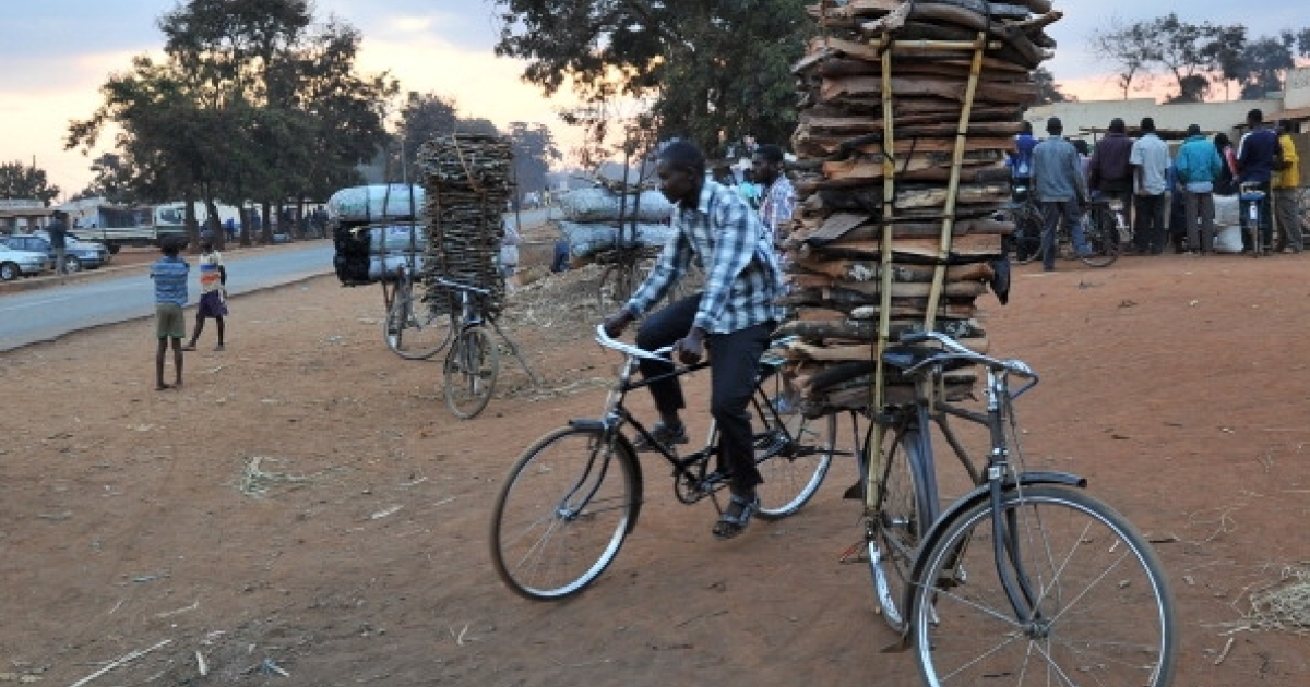 A man rides his bicycle pas another bike with a pile of wood attached outside the village of Lilongwe, Malawi on July 13, 2011. Malawi is one of the world's poorest countries.</p>