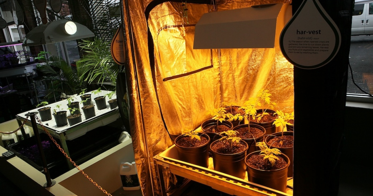 Hydroponic plant growing system is on display in the weGrow marijuana cultivation supply store during its grand opening March 30, 2012.</p>
