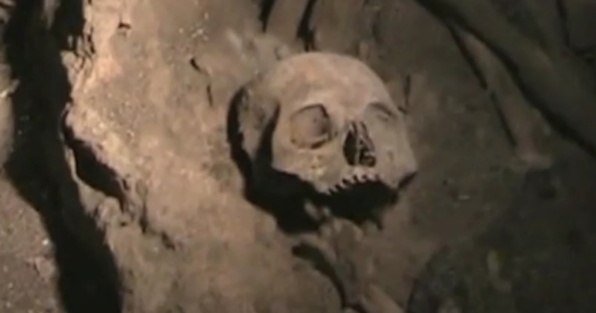 A skull found in Mexico's 1300-year-old mass grave.</p>