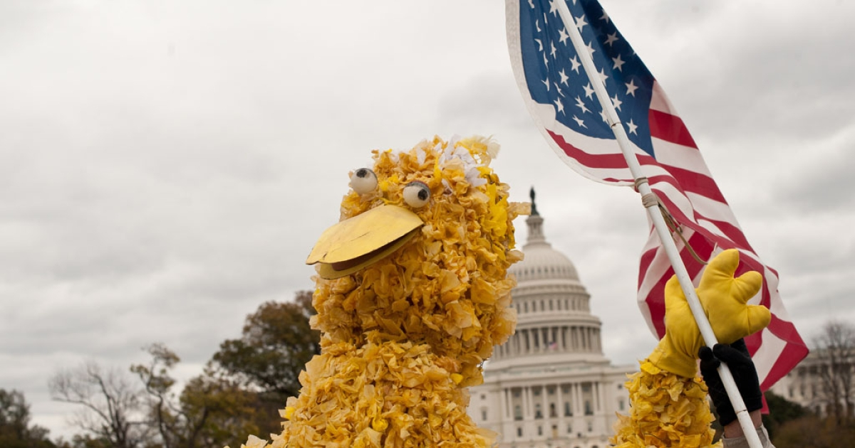 A protester dressed as Big Bird waves a US flag in front of the Capitol during the