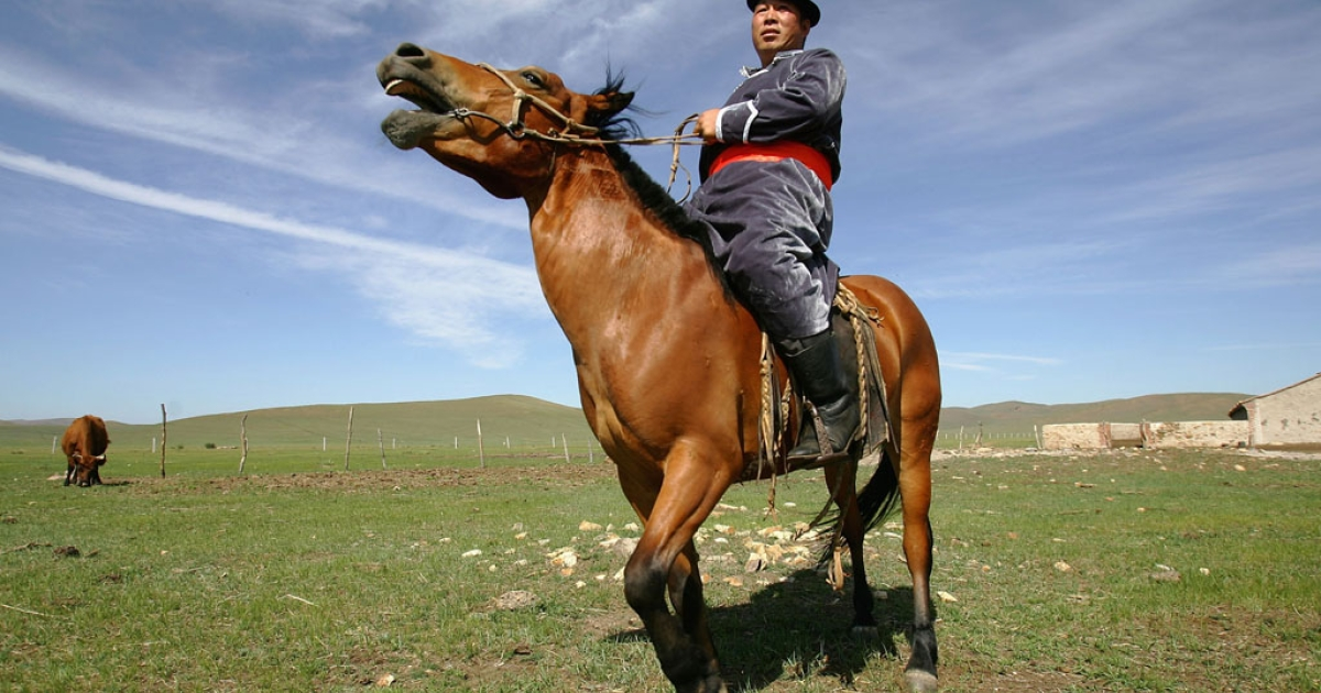 A Mongolian herder rides his horse near his home in Zhenglan County of Xilingguole League, Inner Mongolia Autonomous Region of north China.</p>