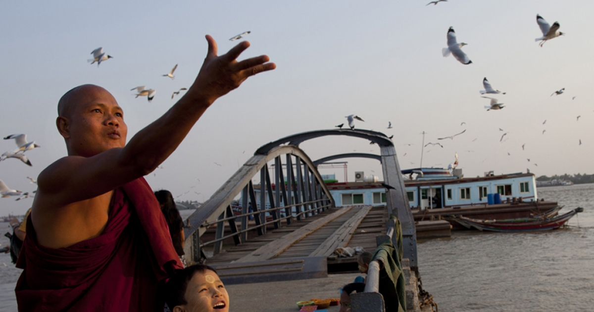 A Burmese monk and his son feed the seagulls along the Yangon river ahead of the parliamentary elections March 29, 2012, Myanmar.</p>