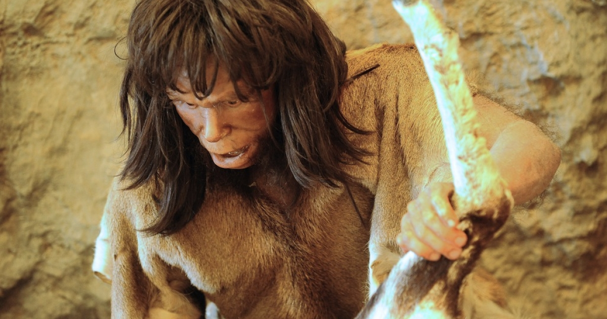 Photo taken on July 8, 2010 of a mannequin of a Tautavel Man presented at the prehistoric museum in Tautavel.</p>
