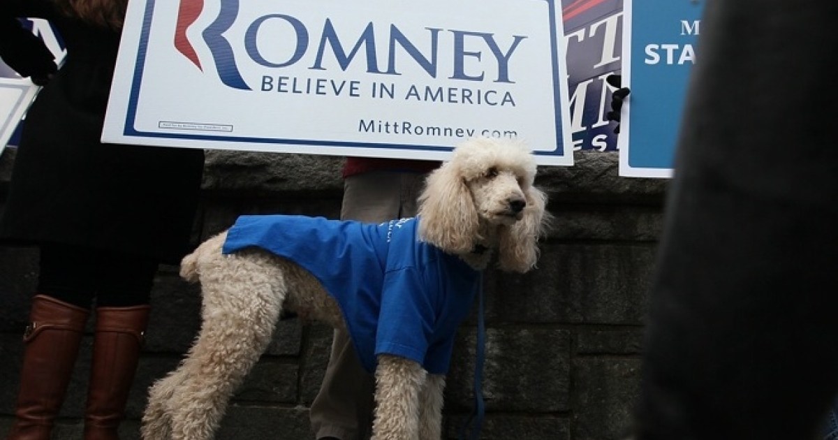 Supporter of Republican presidential candidate and former Massachusetts Gov. Mitt Romney, Bill Gordon of Loudon, New Hampshire, holds sign with his dog, Miles, outside the Capitol Center for the Arts where Republican presidential candidates participate in the NBC News Facebook Debate on 'Meet the Press' January 8, 2012 in Concord, New Hampshire. The six candidates participated in the last debate before the primary election on Tuesday. on January 8, 2012 in Concord, New Hampshire.</p>