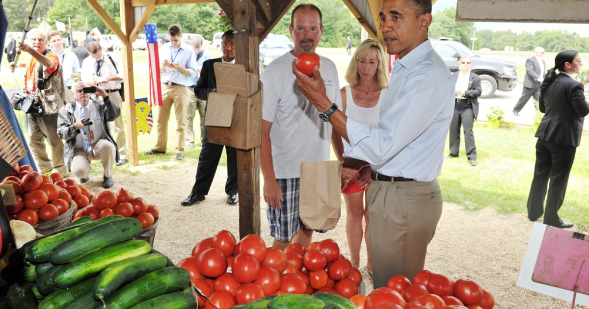 US President Barack Obama hold up a tomato during a stop at Berry's Produce on July 14, 2012 in Mechanicsville, Virginia. Obama is campaigning in Virginia ahead of the November presidential election.</p>