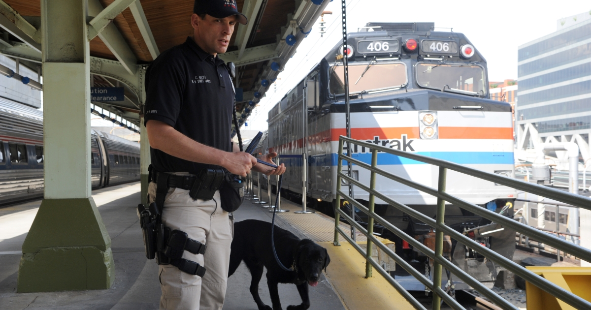 An Amtrak police officer and a sniffer dog patrol Union Station in Washington on May 6, 2011, five days after al-Qaeda head Osama bin Laden was killed by US Navy Seals in Pakistan. Intelligence seized from bin Laden's compound showed his al-Qaeda network pondered strikes on US trains on the 10th anniversary of the September 11 attacks, US officials said.</p>