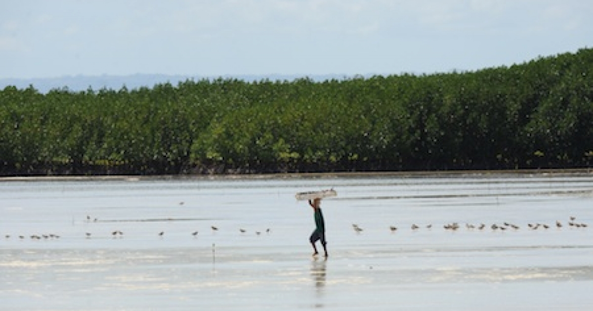 A coastal resident walks along the sand in Cebu province in the Philippines.</p>