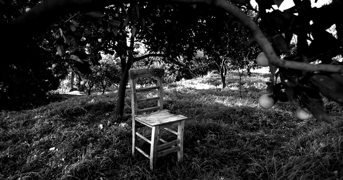 An empty chair sits in an orange grove in Vakifli. While the Armenian deportations and massacres that occurred during the decline of the Ottoman Empire in the early 20th century are recognized as &quot;genocide&quot; today by more than a dozen countries, Turkey vigorously rejects the claim.</p>