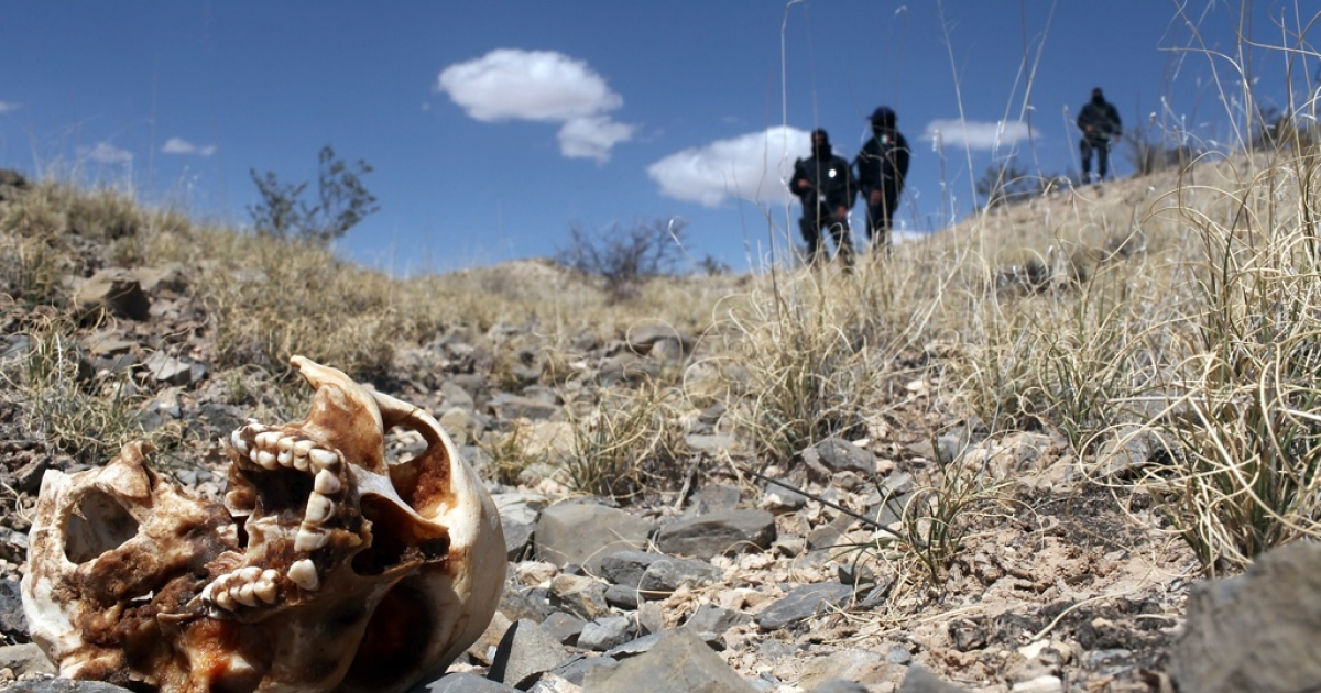 Police found at least a dozen decapitated and dismembered bodies near Guadalajara, Mexico, on May 9, 2012.</p>