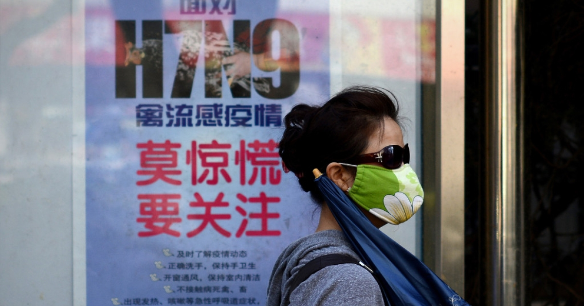 A woman wears a face mask as she walks past a poster showing how to avoid the H7N9 avian influenza virus by a road in Beijing on April 24, 2013.</p>
