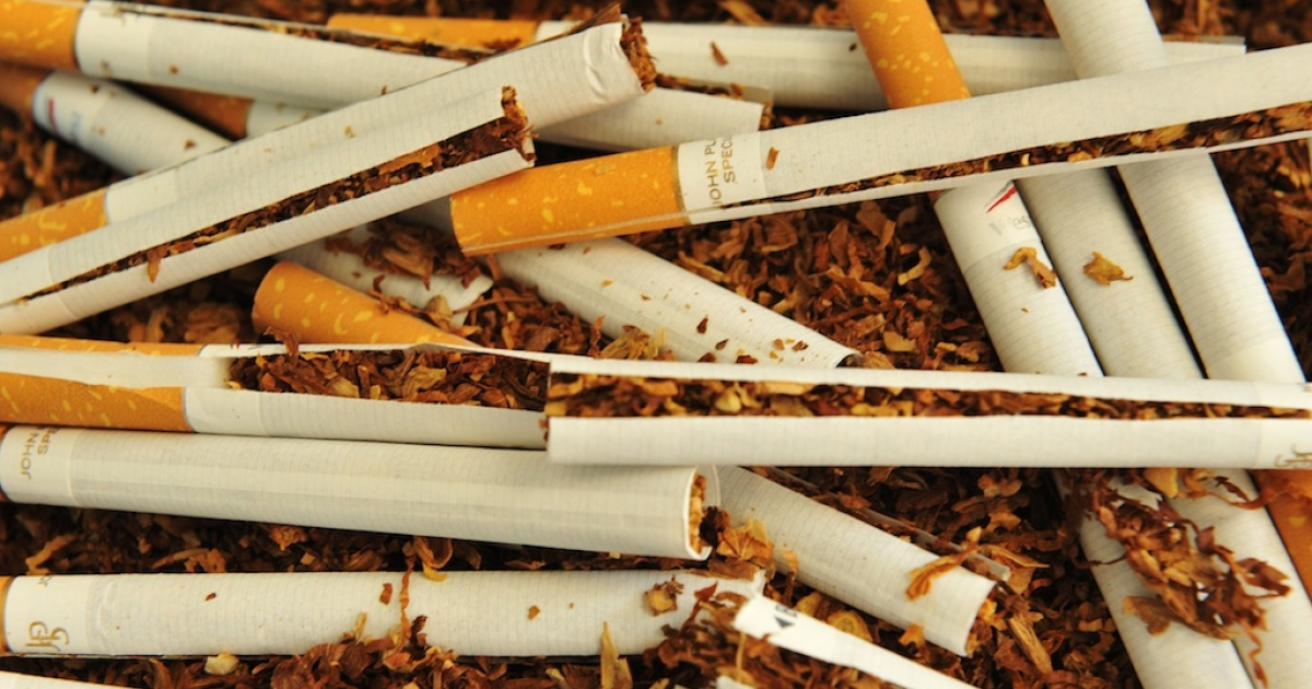 Cigarettes are ripped off prior to be analyzed at the 'Seita-Imperial tobacco' research centre, on May 29, 2012 in Fleury-les-Aubrais, near Orleans, central France.</p>