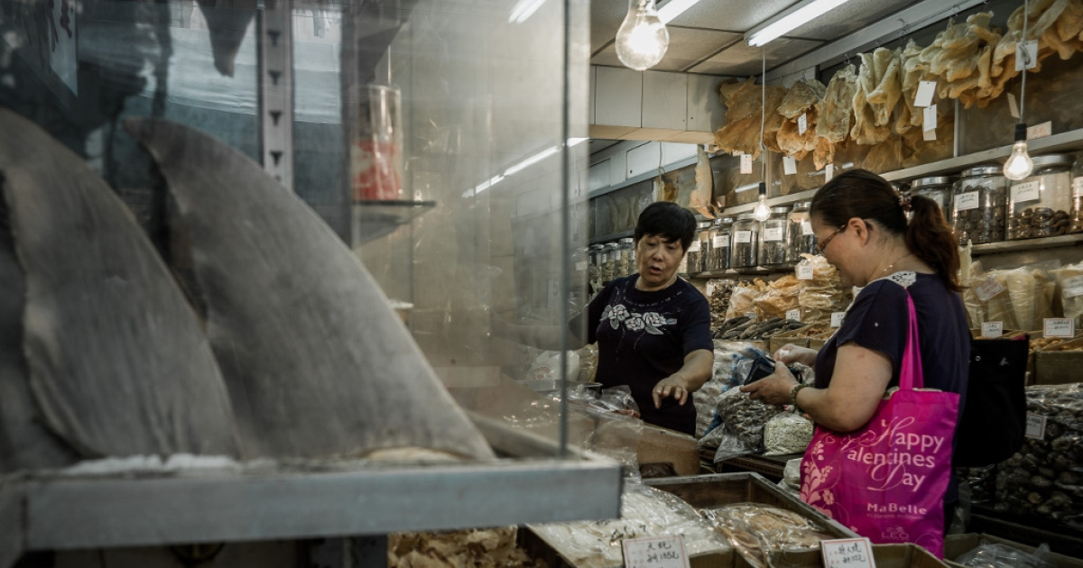 A customer talks to a shopkeeper in a store selling shark fins in Hong Kong on September 5, 2012.</p>