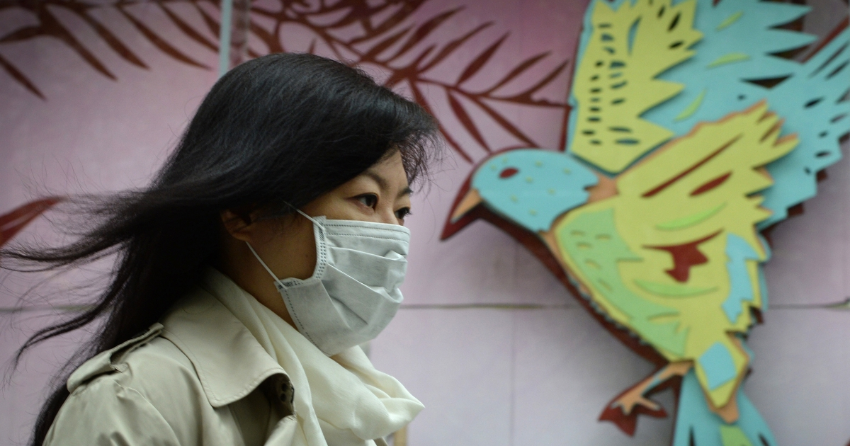 A women wears a face mask as the city's commuters protect themselves against the H7N9 bird flu virus in the downtown area of Shanghai on April 16, 2013. New evidence shows that the virus can be spread by human-to-human contact.</p>