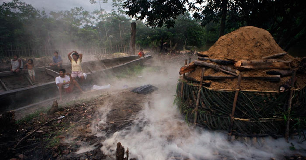 Teodosia Bordoy and her husband Carlos Solsol, make charcoal in Cahuide Village in Peru. The family supports 12 children by cutting the forest as well as netting fish in the Itaya River. Both have had malaria many times.</p>