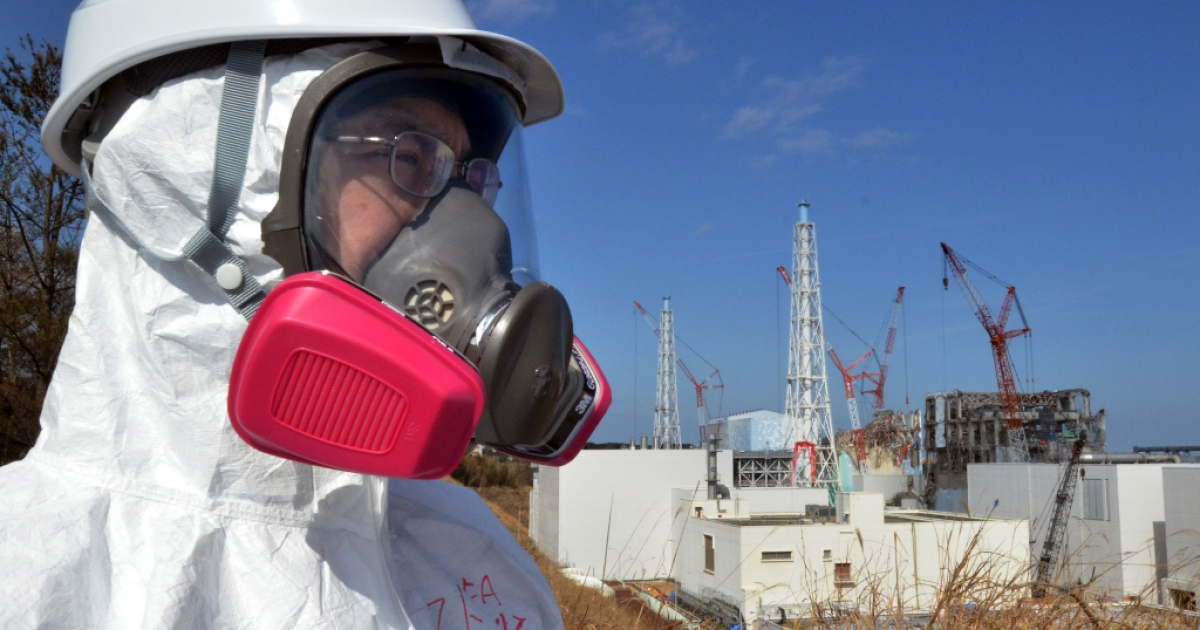A journalist looks at the stricken Tokyo Electric Power Co (TEPCO) Fukushima Dai-ichi nuclear power plant.</p>