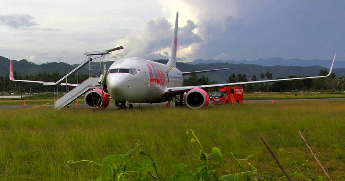 The Lion Air passenger jet is seen in a field after crashing into a cow at Gorontalo airport, on Sulawesi island, on Aug. 7, 2013.</p>