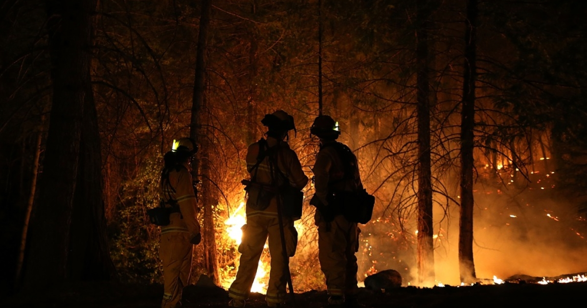 Firefighters from Cosumnes Fire Department monitor a back fire while battling the Rim Fire on Aug. 22, 2013 in Groveland, Calif.</p>