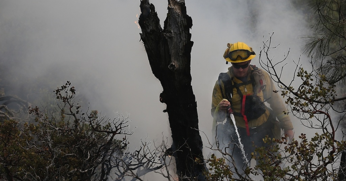 YOSEMITE NATIONAL PARK, CA - AUGUST 24:  Firefighters douse a spot fire as they battle the Rim Fire on August 24, 2013 in Yosemite National Park, California. The Rim Fire continues to burn out of control and threatens 4,500 homes outside of Yosemite National Park. Over 2,000 firefighters are battling the blaze that has entered a section of Yosemite National Park and is currently 5 percent contained.</p>