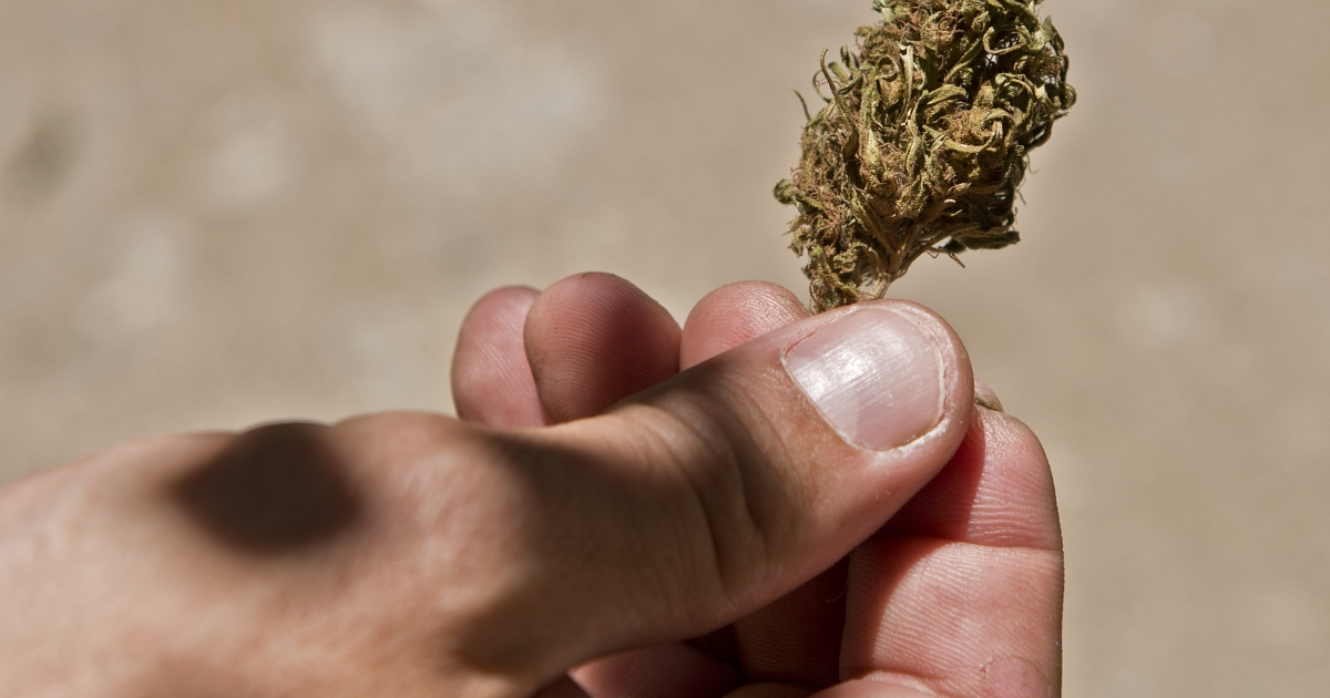 A new study shows that pot smokers double their risk of having a stroke.</p>