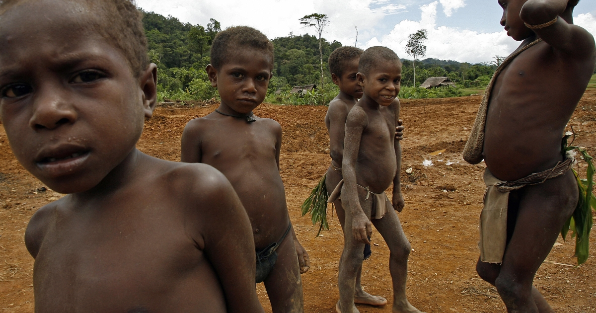 Children of the primitive Andai tribe of hunter-gatherers wander in a clearing near Kaiam village in the remote East Sepik province of Papua New Guinea, 05 July 2007.</p>