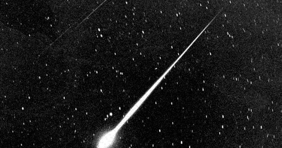 This bright Leonid fireball was sighted in the sky above Wrightwood, CA, in 1966. California caught a glimpse of a fireball Friday night.</p>