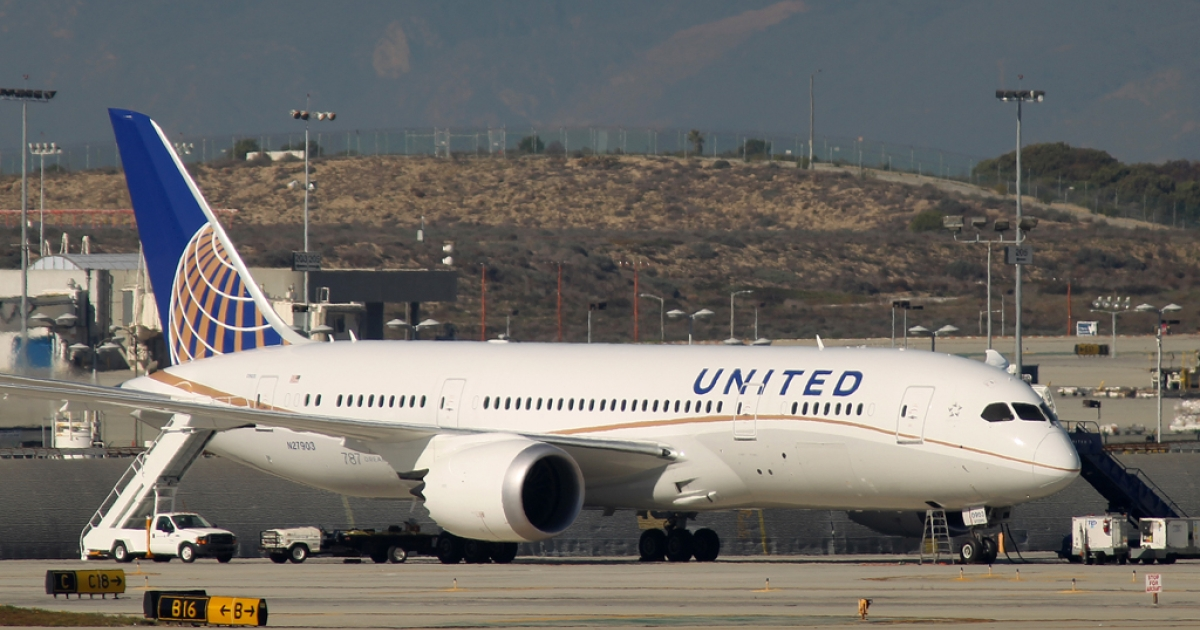 A grounded Boeing 787 Dreamliner jet operated by United Airlines is parked at Los Angeles International Airport (LAX) on Jan. 17, 2013, in Los Angeles, Calif. The Federal Aviation Administration grounded all US-registered Dreamliner jets in January for the repair of batteries believed to be linked to a fire risk.</p>