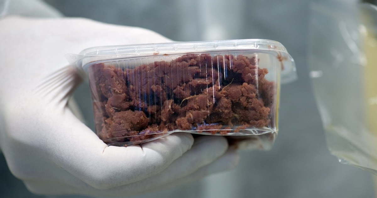 A sample of a meat product is seen in a laboratory to be DNA-tested on February 19, 2013 in Berlin. Horsemeat in 'beef' dishes has now been confirmed in products found in Britain, Ireland, France, Austria, Norway, the Netherlands, Germany, Italy, Spain, Portugal and Belgium.</p>