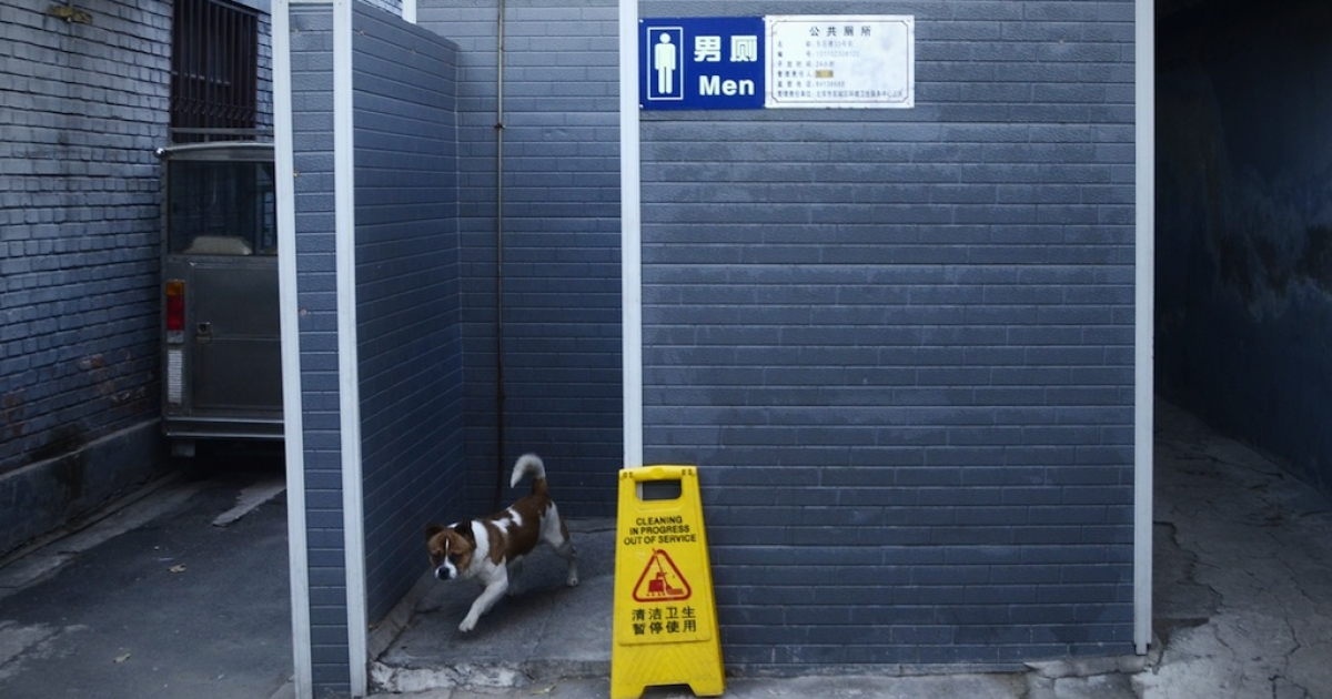 Public restrooms for pets will soon grace some of China's streets.</p>