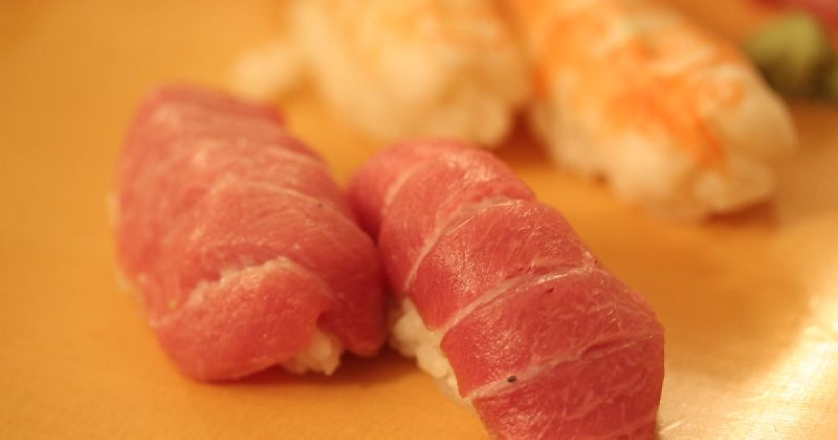 Toro, the fatty bluefin tuna belly.</p>