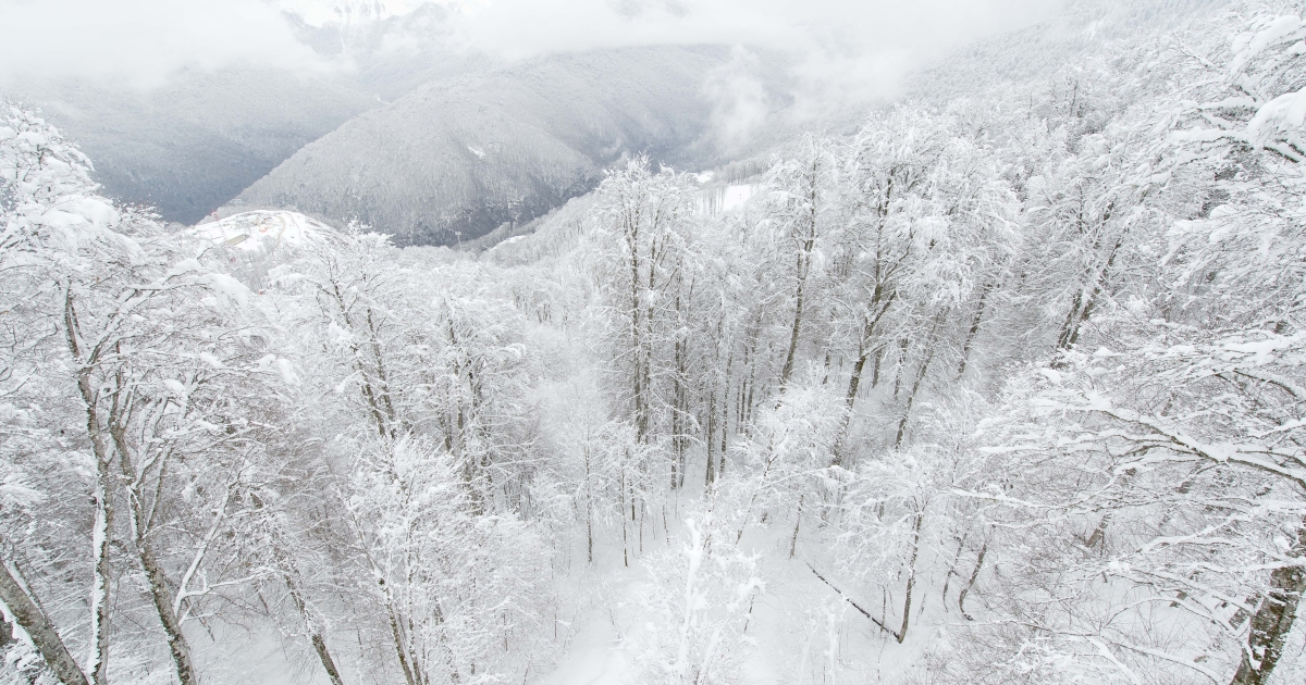 Officials in Sochi, Russia are said to be stockpiling snow for next year's Winter Olympics just in case.</p>