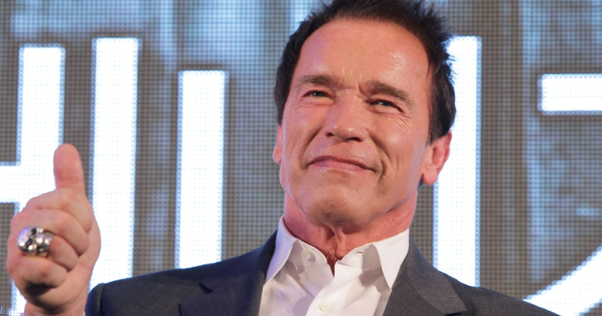 Actor Arnold Schwarzenegger attends 'The Last Stand' press conference at Conrad Hotel on February 20, 2013 in Seoul, South Korea.</p>