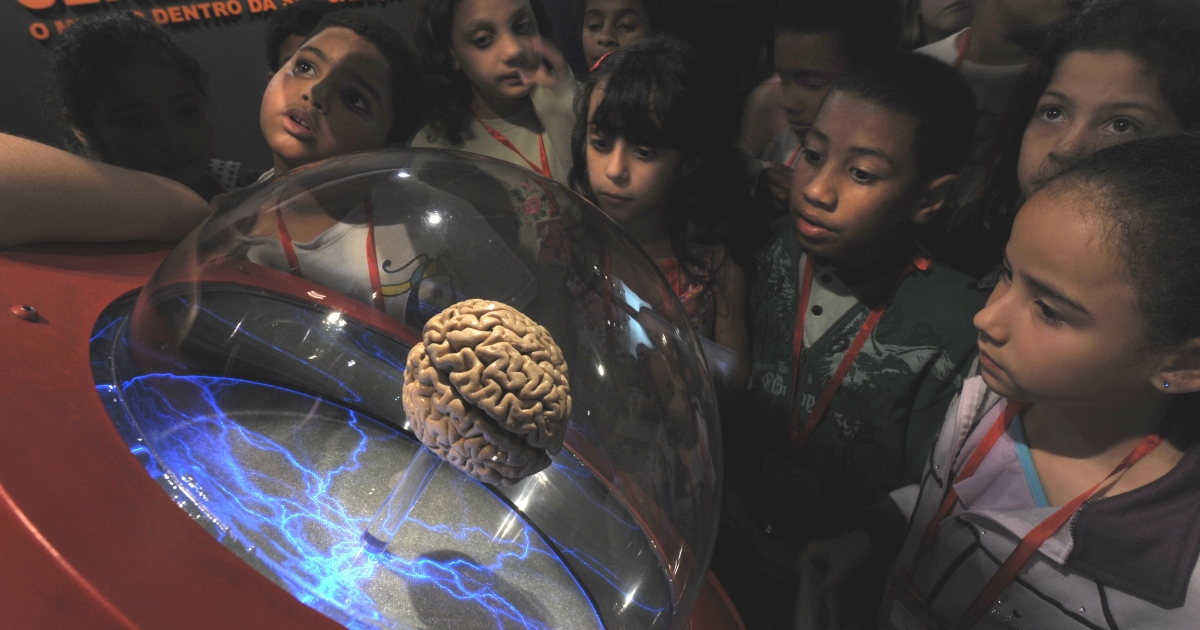 Schoolchildren in Sao Paulo, Brazil, engage with an interactive museum exhibit,