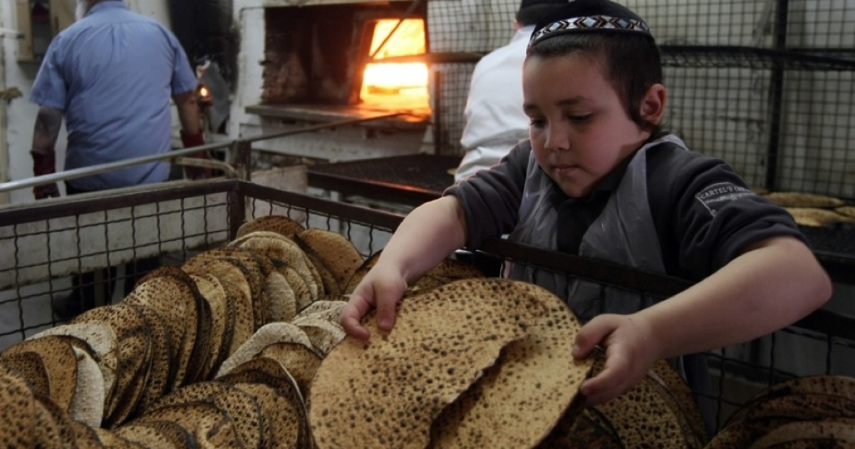 An Orthodox Jewish boy inspects a Matzah, the unleavened bread eaten during Passover.</p>