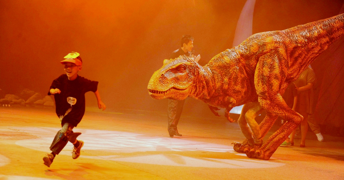 A Chinese boy takes part in an artificial dinosaur show presented by performers in Beijing on July 30, 2010. American biologists found the 'Dragon King' dinosaur fossil in northwest China in 2006. It was recently declared a new species of theropod.</p>