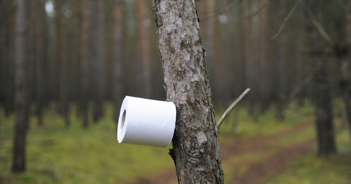 A tree makes for a toilet paper holder as anti nuclear protestor against the transport and storage of nuclear waste wake up at their blockade after sleeping on the road leading to the storage facility in Gorleben, November 8, 2010. (ODD ANDERSEN/AFP/Getty Images)</p>