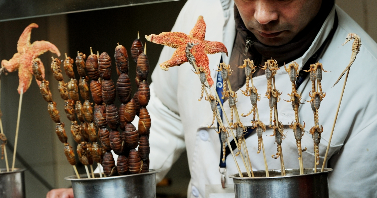 A hawker sells scorpions, star fish, sea horses and silkworm cocoons for adventurous customers to eat at a market stall in Beijing on January 8, 2012.</p>